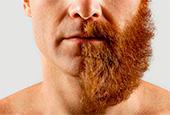 Безопаснее с бородой